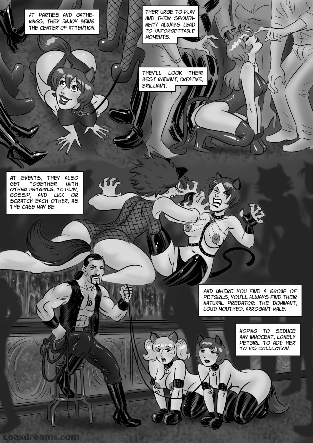 World of petgirls - page 05